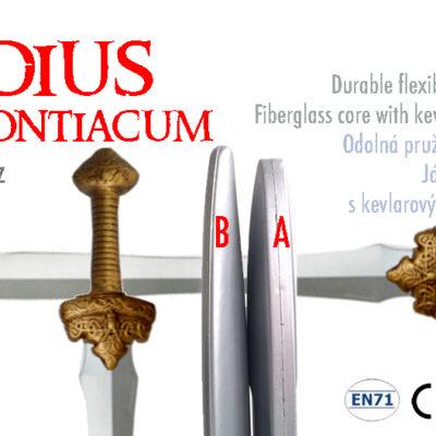 gladius magontiacum